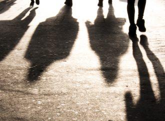 shadows communite hedge funds