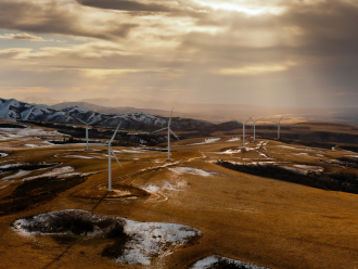 wind turbines in grass